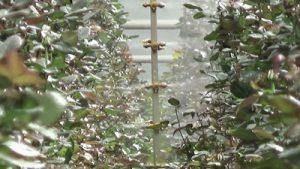 Spuitmasten voor de tuinbouw